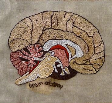 Afbeelding van Lucienne Lubbers via www.stichyourbrain.com. Een fantastisch project van Monica Auch over de intelligentie van onze handen en het effect van creëren op gezondheid en ons welbevinden.